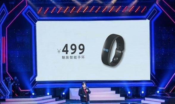 Meizu_H1_Smart_Band.JPG